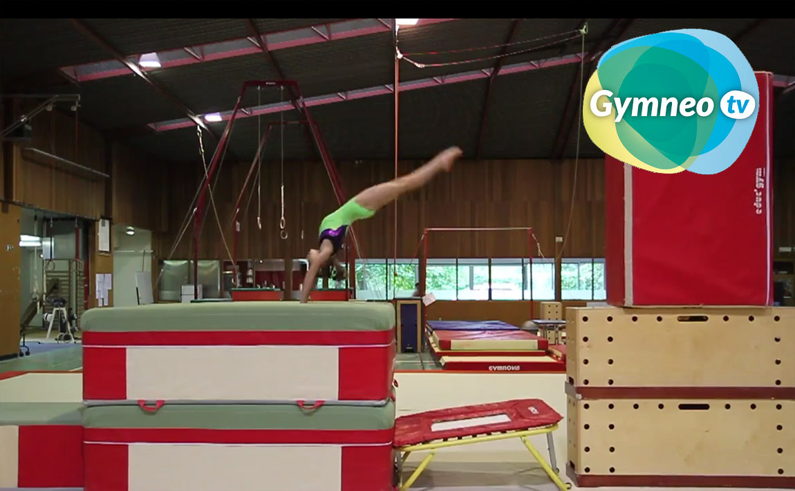 Gymnastics drills - Gymneo, Back full