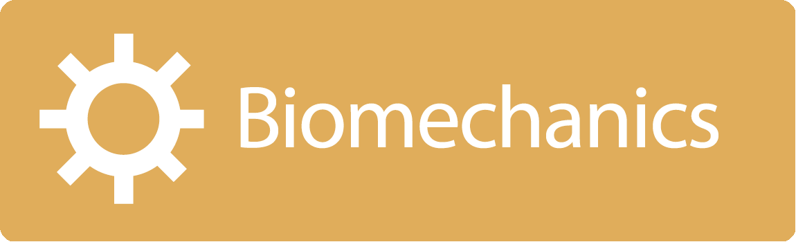 Gymsymbol Topic Biomechanics
