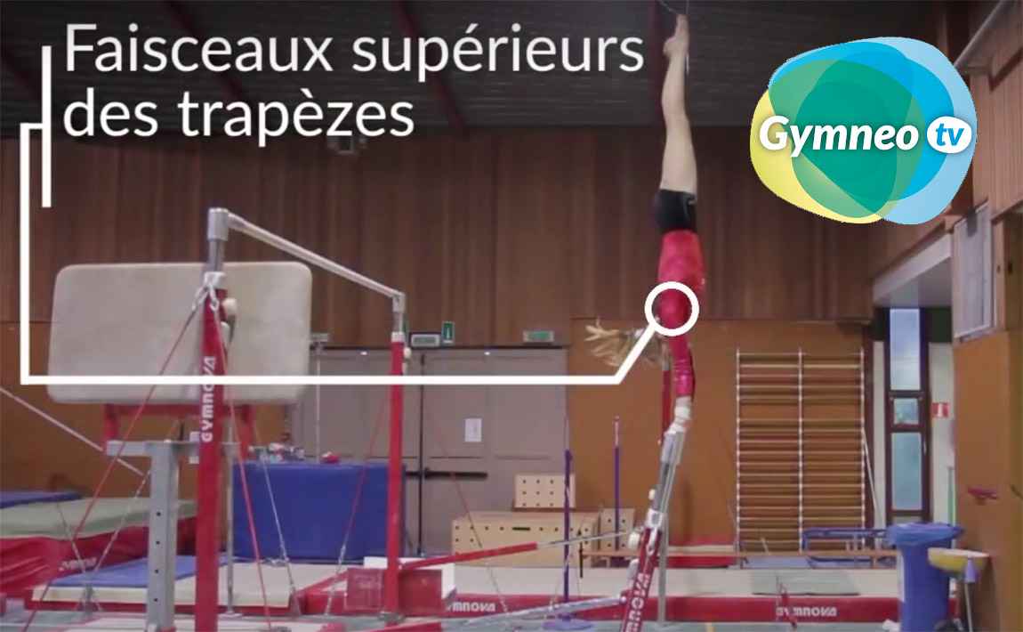 Gymnastics drills - Gymneo, Handstand for uneven bars